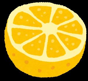 グレープフルーツカット