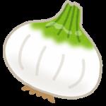 新玉ねぎの旬と保存法!ヒルナンデスで紹介された玉ねぎステーキ