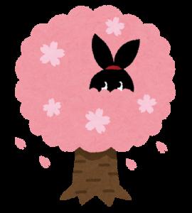 お花見うさぎ