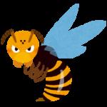 ハチに刺された時の対処法!2回目の方が危険って本当なの?